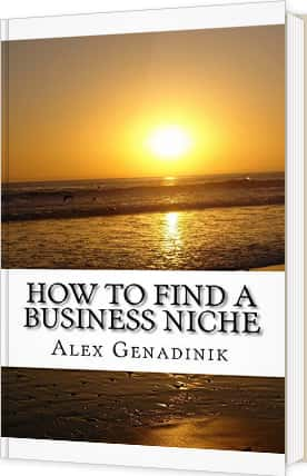 Business niche book